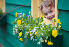 child, girl, baby, house, window, smile, flowers wallpaper