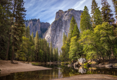 yosemite national park, nature, tree, forest, mountains, river wallpaper