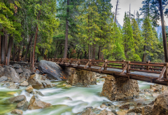 yosemite, nature, bridge, river, forest, tree, rocks wallpaper