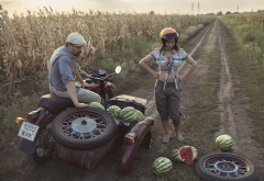 field, road, situation, motorcycle, crash, girl, watermelon, women, busty wallpaper