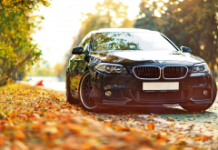 bmw, autumn, leaf, cars, bmw m5 f10, bmw m5 wallpaper