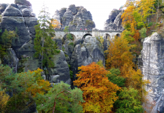 bastei, elbe sandstone mountains, germany, rocks, tree, bridge, autumn wallpaper