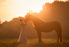 women, model, horse, animals, outdoors, sunlight, dress wallpaper