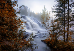 nature, fall, water, waterfall, trees, autumn wallpaper