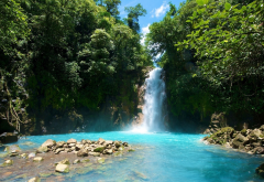 san jose, costa rica, rainforest, nature, waterfall, tree, stones, river wallpaper