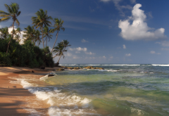 shore, beach, sand, waves, palm, clouds, ocean, sri lanka wallpaper