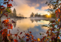 nature, autumn, morning, beautiful, fog wallpaper