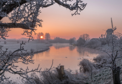 nature, winter, snow, tree, sunset, river, hoarfrost, frost wallpaper
