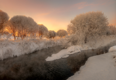 nature, winter, snow, tree, frost, stream, river wallpaper