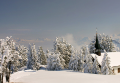 winter, landscape, switzerland, tree, fir, snow, house wallpaper