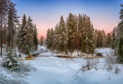 nature, landscape, forest, river, winter, snow, beautiful wallpaper