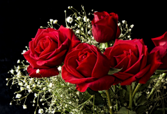 flowers, roses, bouquet, red roses wallpaper