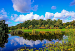 nature, autumn, lake, trees, sky, clouds, reflection wallpaper
