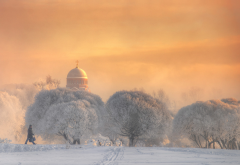 tree, winter, sky, nature, snow, church, dome, saint petersurg, russia wallpaper