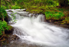 cascade, waterfall, greenery, forest, stream, nature wallpaper