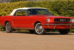 1964 mustang convertible, cars, red car, mustang, mustang convertible wallpaper