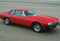 Jaguar XJS Classic, Jaguar XJS, Jaguar, cars, retro cat wallpaper