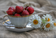 cup, berry, strawberry, flowers, daisies, summer wallpaper