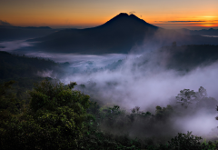 Bali, Indonesia, nature, landscape, mist, mountain, valley, volcanoes, forest, sunrise wallpaper