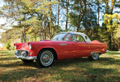1956 ford thunderbird, retro, cars, ford thunderbird, ford, red car wallpaper