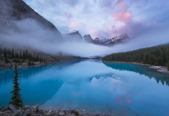 canada, reserve, banff, mountains, forest, lake, nature, landscape, morning, fog wallpaper
