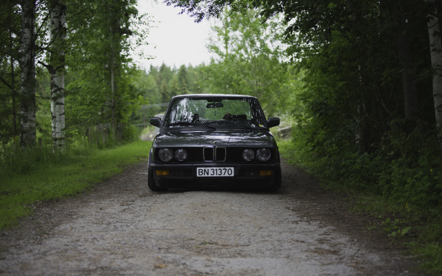 5400x3600 pix. Wallpaper BMW E28, Squatty, BMW, car, forest, tree, birch