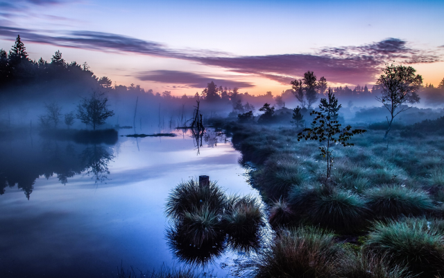 2200x1375 pix. Wallpaper nature, fog, sunrise, tree, river, Germany, calm, water