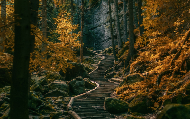 1920x1200 pix. Wallpaper path, stairs, forest, Germany, nature, landscape, tree, autumn
