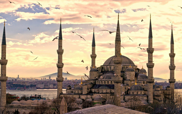 2560x1440 pix. Wallpaper Hagia Sophia, Mosque, Turkey, seagull, bird, clouds