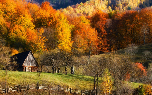 1920x1200 pix. Wallpaper autumn, fall, barns, forest, grass, hill, landscape, tree, colorful, fence, nature