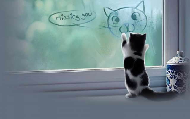 1920x1080 pix. Wallpaper animals, cat, baby animals, kittens, jars, window, digital art