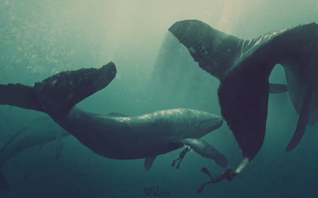2000x1104 pix. Wallpaper whale, diver, artwork, underwater