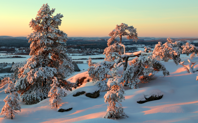 5006x3337 pix. Wallpaper finland, lapland, winter, sunset, snow, tree, nature