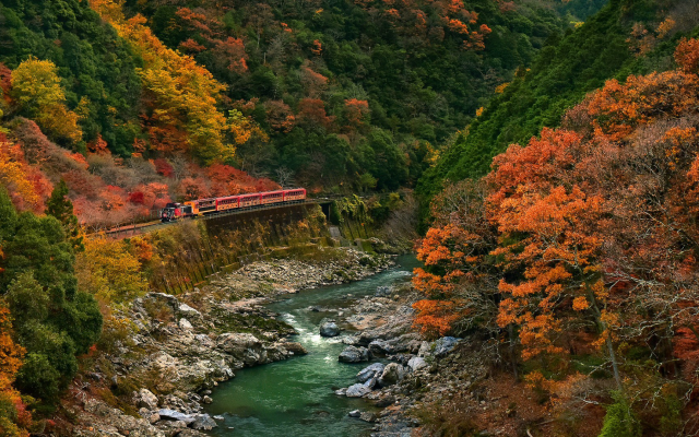 1920x1080 pix. Wallpaper train, nature, landscape, trees, forest, branch, leaves, colorful, fall, rock, stones, river, stream