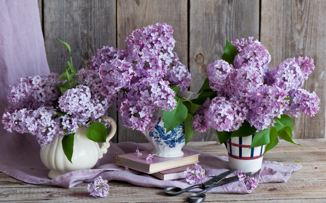 2000x1331 pix. Wallpaper bouquet, lilac, flowers, books, scissors, nature