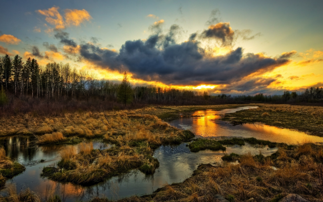 2560x1600 pix. Wallpaper sunset, swamp, dark clouds, grass, nature
