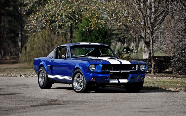 2880x1800 pix. Wallpaper 1966 shelby ford mustang dt350r, ford mustang, ford, shelby, cars, muscle cars