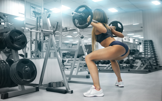 2560x1600 pix. Wallpaper girl, women, brown-haired, sport, gym, squat, bar, sportswear