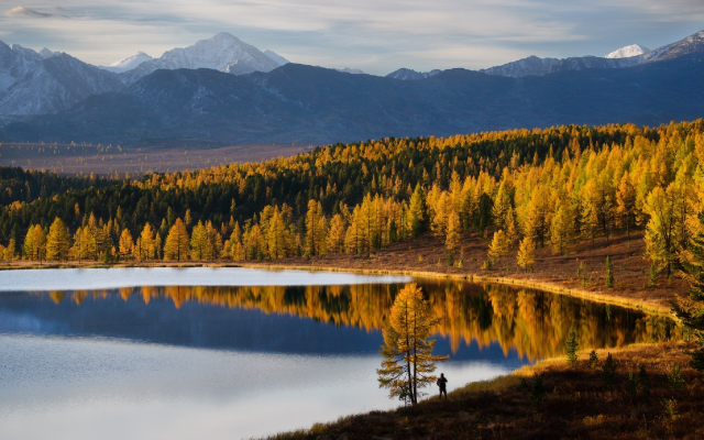 1920x1280 pix. Wallpaper altai, mountains, autumn, lake, nature, forest