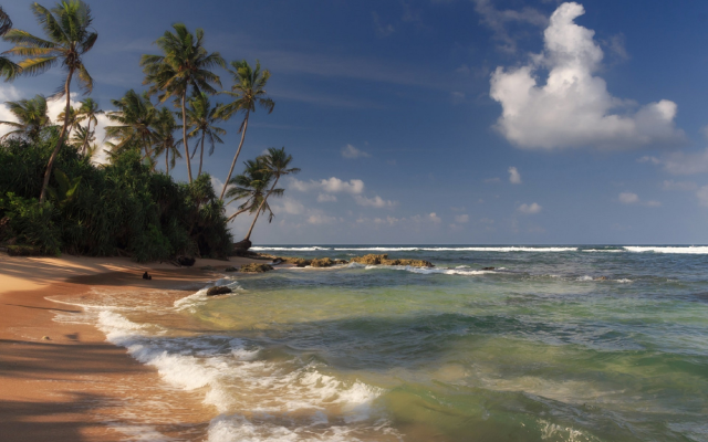 1920x1268 pix. Wallpaper shore, beach, sand, waves, palm, clouds, ocean, sri lanka