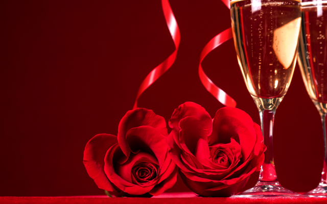 6381x4254 pix. Wallpaper holidays, flowers, red rose, glasses, champagne, petals