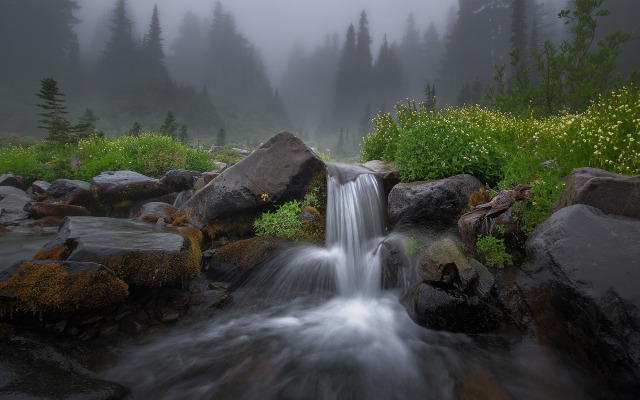 2000x1448 pix. Wallpaper nature, forest, stream, stones, waterfall, threshold, morning, fog