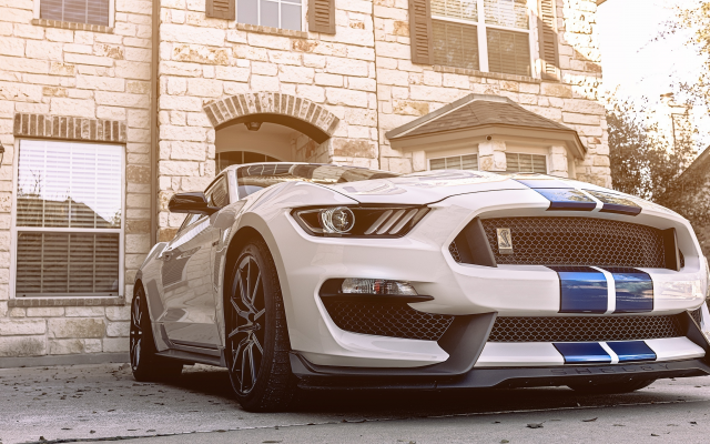2560x1440 pix. Wallpaper ford mustang gt350, cars, ford mustang, ford, sportcar