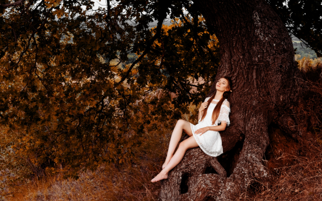 2560x1707 pix. Wallpaper women, model, brunette, elf, elves, tree, white dress, dress, closed eyes, sitting, barefoot