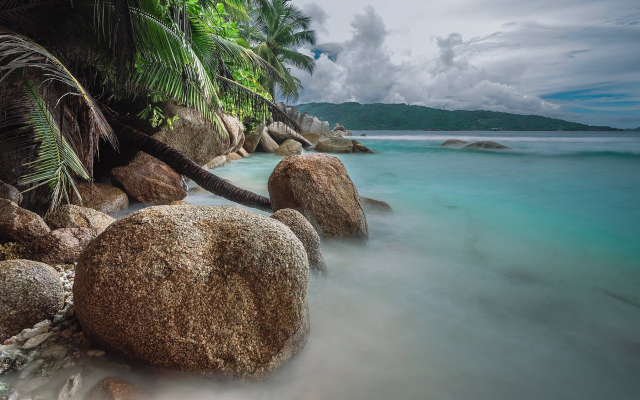 2048x1121 pix. Wallpaper tropics, ocean, palm trees, stones, sea, nature