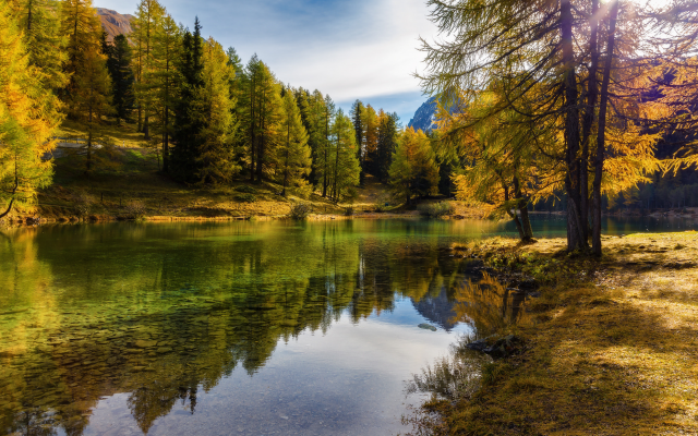 1980x1320 pix. Wallpaper nature, autumn, october, switzerland, lake, trees