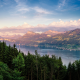 lake, forest, zurich, switzerland, nature wallpaper