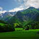 alps, mountains, cabin, grass, cows, forest, nature, landscape wallpaper