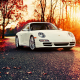 Porsche 911, car, autumn, leaf, sunset, Porsche, nature wallpaper