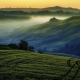 hill, fog, grass, valley, spring, nature, landscape wallpaper